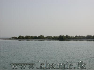 http://khamir.persiangig.com/image/jangal.jpg